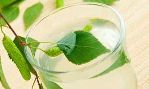 Берёзовый сок — консервация в домашних условиях