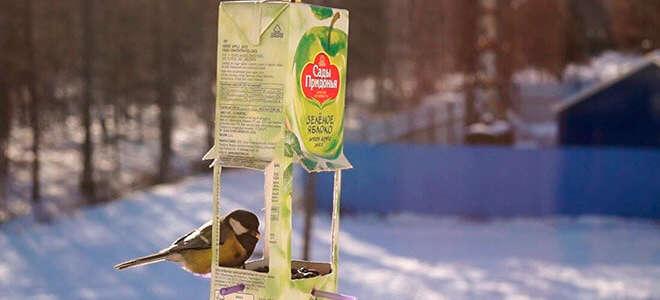 Как сделать кормушку для птиц из коробок самостоятельно?