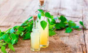 Квас из берёзового сока — рецепты приготовления