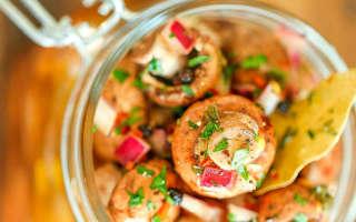 Маринованные грибы на зиму — рецепты заготовок