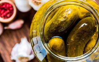 Огурцы соленые на зиму холодным способом
