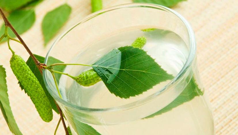 Берёзовый сок - консервация в домашних условиях