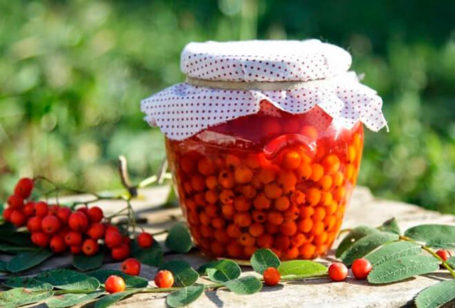 Красная рябина на зиму заготовки рецепты лучшие