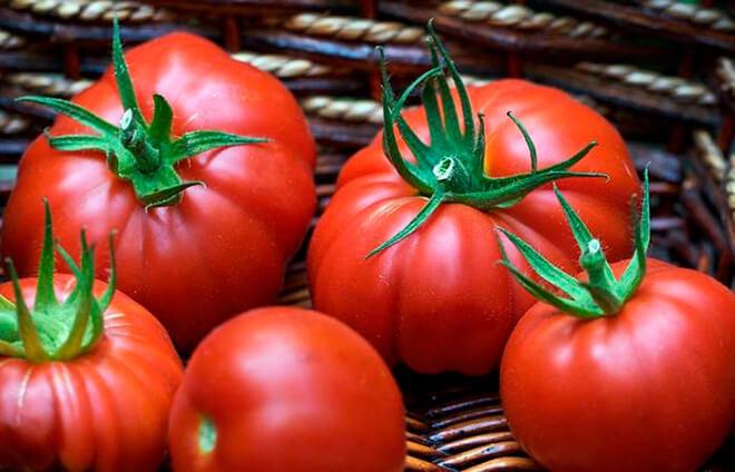 Томат Пузата Хата характеристика и описание сорта уход и выращивание из семян